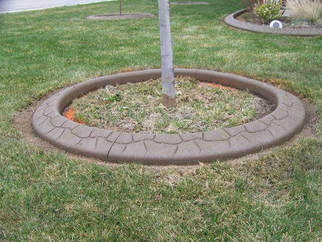 Brown Flagstone Tree Ring